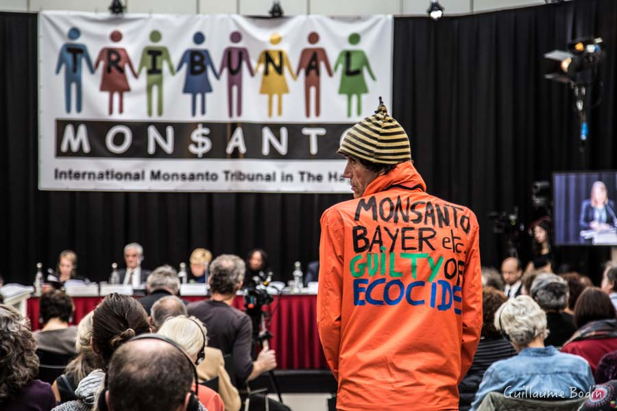 """Résultat de recherche d'images pour """"Steven Shrybman Monsanto"""""""