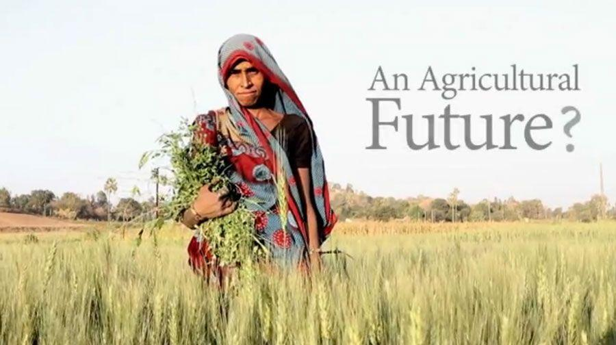 An Agricultural Future? - India