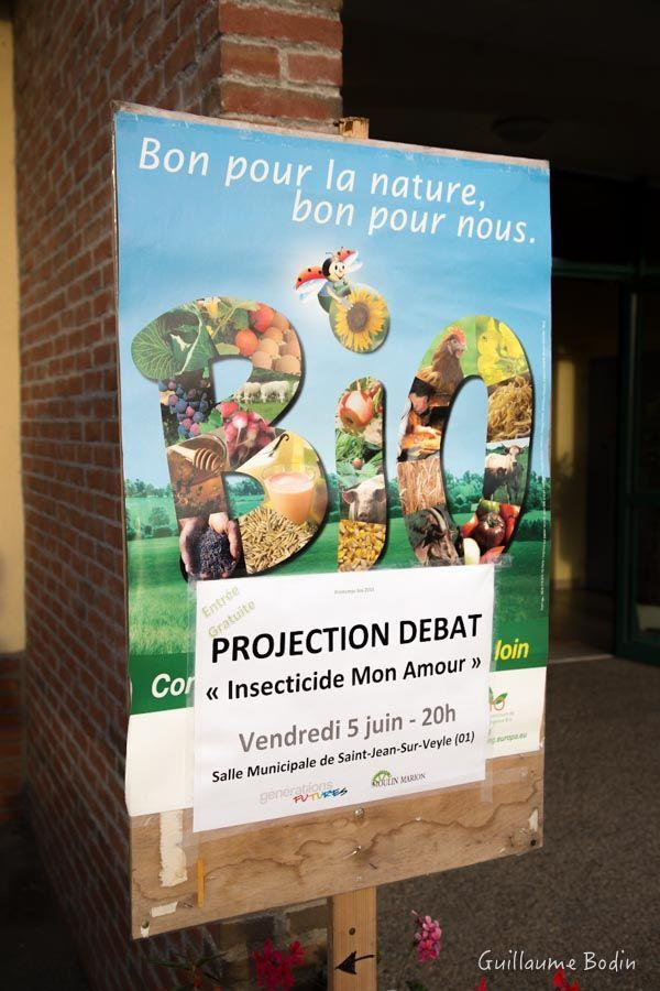 "Projection de ""Insecticide Mon Amour"""