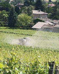 Photo traitement insecticides Savoie